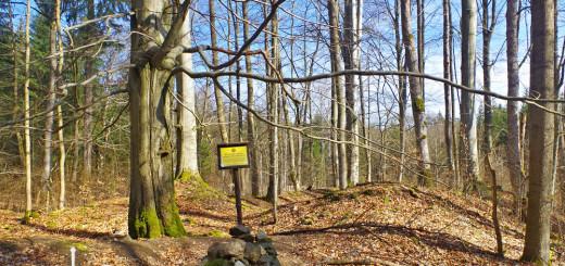 Cedule označující místo, kde stál benediktinský klášter Teslíny