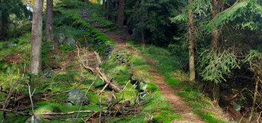 Stará cesta k nižšímu s obou vrcholků
