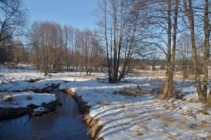 Niva Padrťského potoka na padrťských pláních