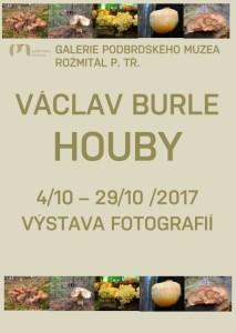 Václav Burle: Houby, zdroj: Podbrdské muzeum